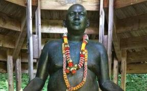 swami power