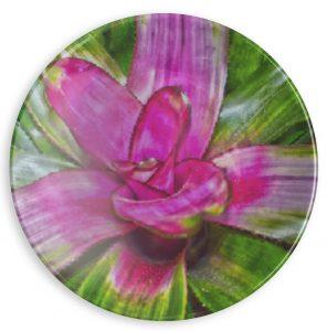melissa fontenette mitchell
